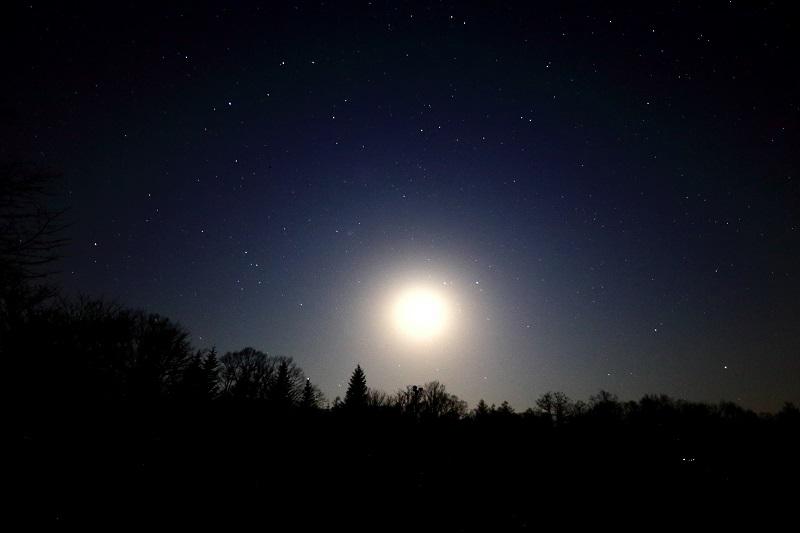 座 満月 うお うお座のエネルギーが満ちるとき。負の感情を手放して。8月31日(月)~9月6日(日)